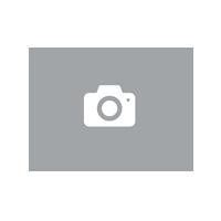 CHMILE CHAU-Sandales Femmes-Sexy-Stiletto-Plusieurs Coloris-Bride de Cheville-Talon Haut Métal-Aiguille-Bout Rond